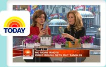 Watch OrbitBrush on The Today Show